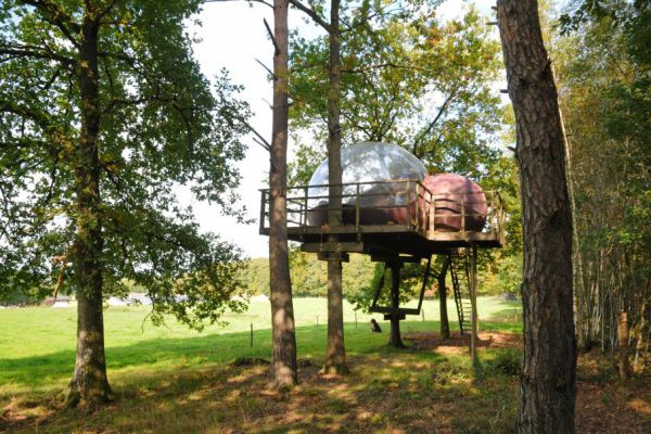 6x Unieke glamping accommodaties