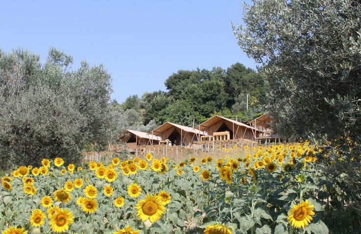 Glamping - Countryhouse Il Girasole